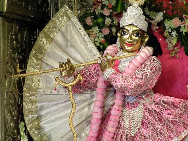... × 487   Posted in Return to Sri Radha Krishna-chandra photo Gallery